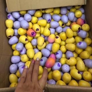 Trứng Hatchimal các mùa – sỉ ib