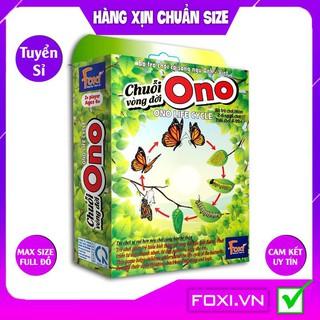 [FREESHIP SALE SỐC] Board game-Chuỗi Ono vòng đời Ếch Bướm Foxi-thẻ glenndoman và flashcard thông minh--siêu rẻ. thumbnail