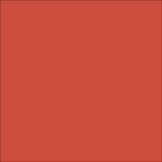 QUẦN ĐÙI THUN COTTON MỊN MÁT -Quần đùi trơn 5 màu thái lan -Quần đùi thể thao nữ -CHẠY VIỀN -Quần đùi thể thao nữ (sỉ)