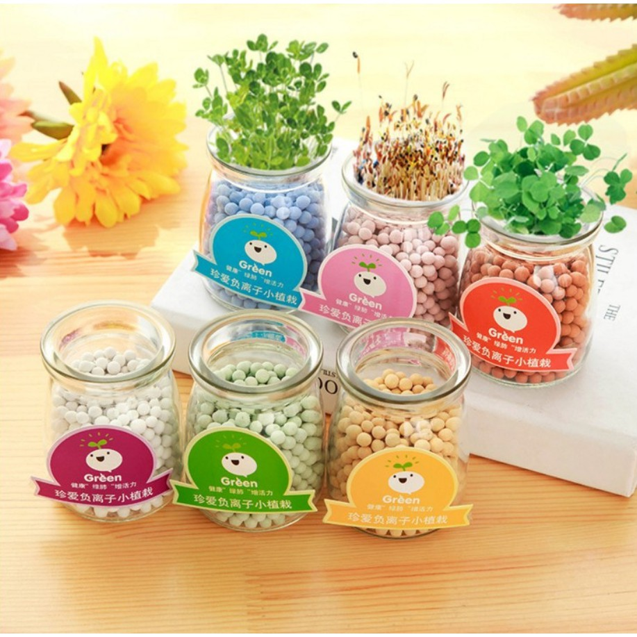 Lọ sữa chua mọc cây xinh xinh cho bạn trang trí bàn học - 2828279 , 220520621 , 322_220520621 , 45000 , Lo-sua-chua-moc-cay-xinh-xinh-cho-ban-trang-tri-ban-hoc-322_220520621 , shopee.vn , Lọ sữa chua mọc cây xinh xinh cho bạn trang trí bàn học