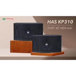 Loa karaoke HAS KP310 thumbnail