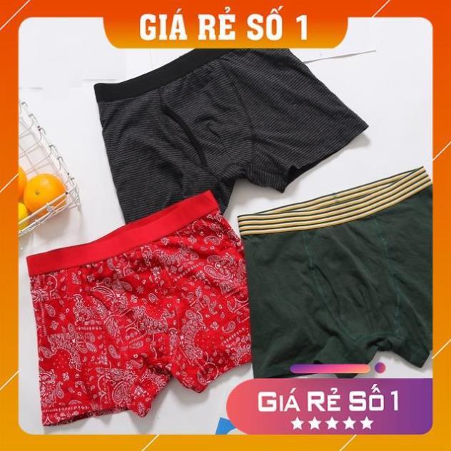 Combo 2 set quần sịp GU xuất Nhật và Fruit of the loom xuất âu chuẩn xịn