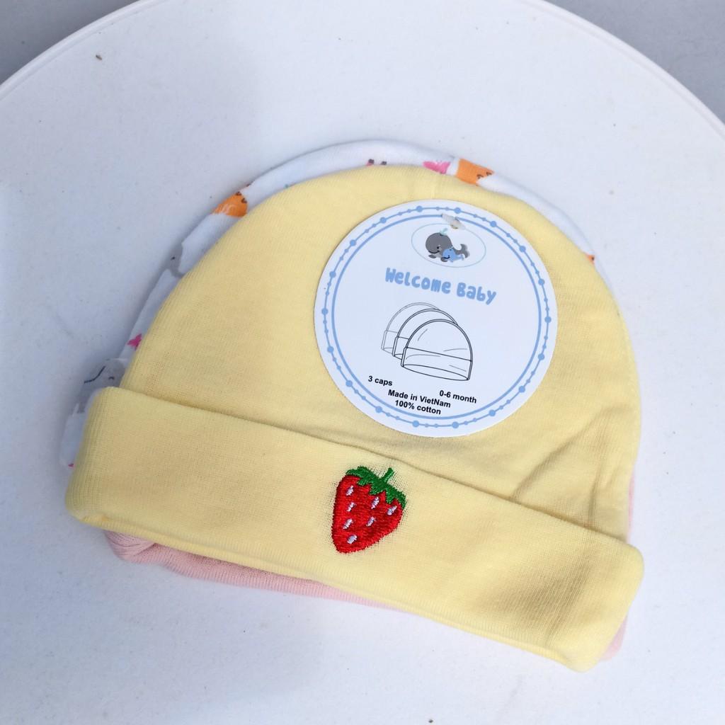 Set 3 mũ nón em bé sơ sinh thu đông 2 lớp họa tiết cho bé trai và bé gái từ 0-6 tháng tuổi Bống Bang BB