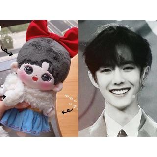 Doll Đô Đô Bao doll Tiêu Chiến x VNB (only doll 20cm)