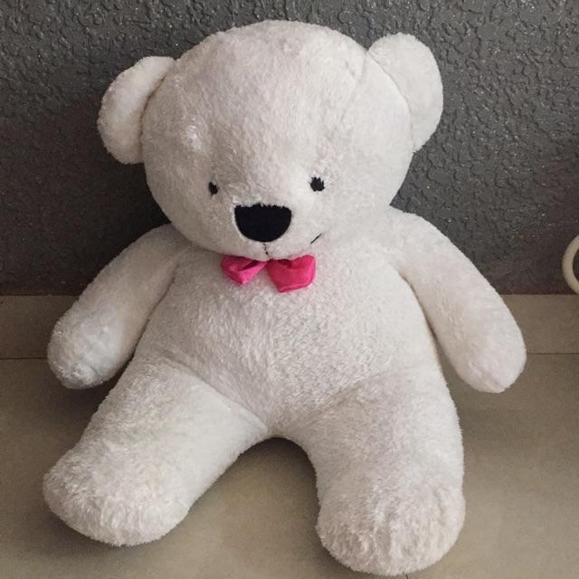 gấu teddy cao cấp 80cm