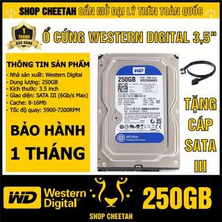 """Ổ cứng 250GB Western Digital HDD 3.5"""" - Chính Hãng – Bảo hành 1 tháng – Tháo máy đồng bộ mới 99% - HDD WD xanh"""