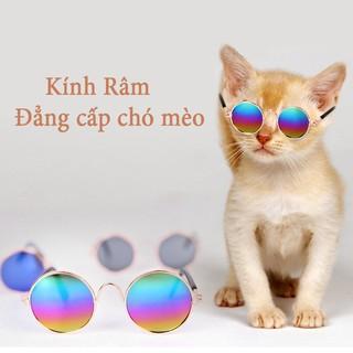 Kính râm cho chó mèo, kính mắt cho chó mèo cực ngầu, cute - YEUPET thumbnail