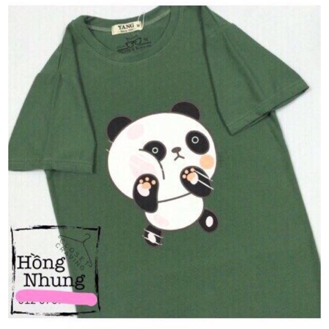 Áo Thun Hình Gấu Panda