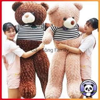 Gấu bông teddy 1m8 khổ cao 1m6