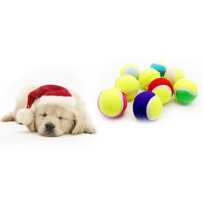 Bóng tennis - đồ chơi cho chó mèo