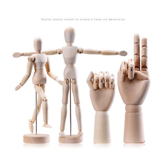 Hình nhân gỗ – Trưng bày – Mô hình Luyện vẽ Anatomy