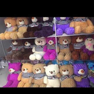 Gấu Teddy đủ sz