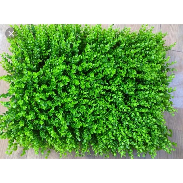 Combo 20 miếng Thảm cỏ nhựa tai chuột trang trí sự kiện studio cửa hàng