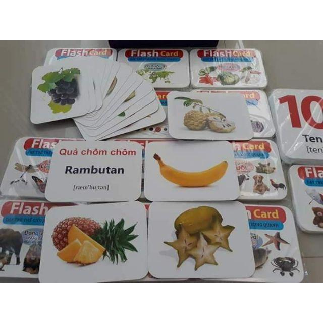 Thẻ học thông minh cho bé loại to 14 chủ đề với 280 thẻ
