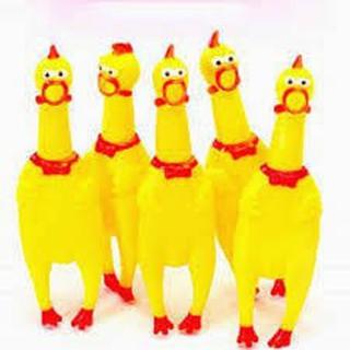 KHUYẾN MÃI Gà Bóp Kêu Gà la hét Shrilling Chicken Sz Lớn và Nhỡ- ảnh gốc nha Hàng nhập khẩu