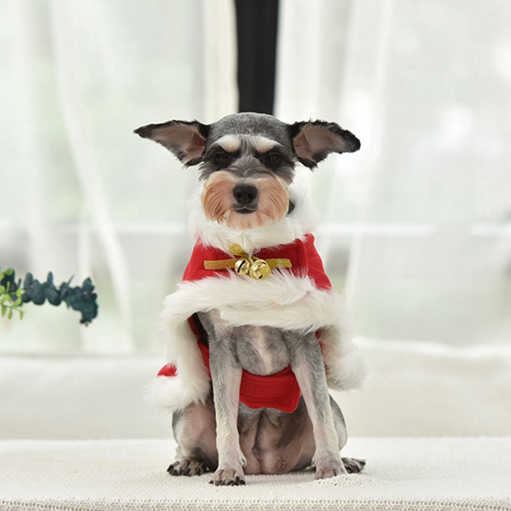 Áo choàng Giáng sinh cho thú cưng - 22262085 , 3704830597 , 322_3704830597 , 146000 , Ao-choang-Giang-sinh-cho-thu-cung-322_3704830597 , shopee.vn , Áo choàng Giáng sinh cho thú cưng