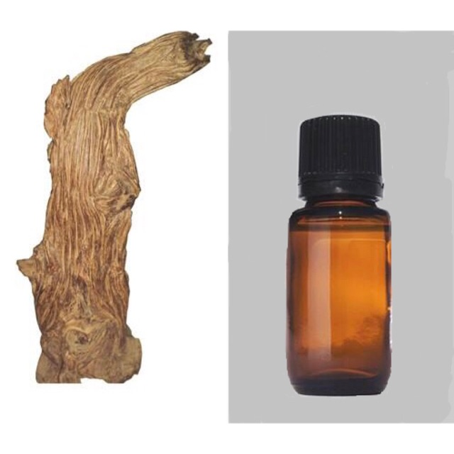 Tinh dầu Trầm Hương ( Agarwood Essential Oil )
