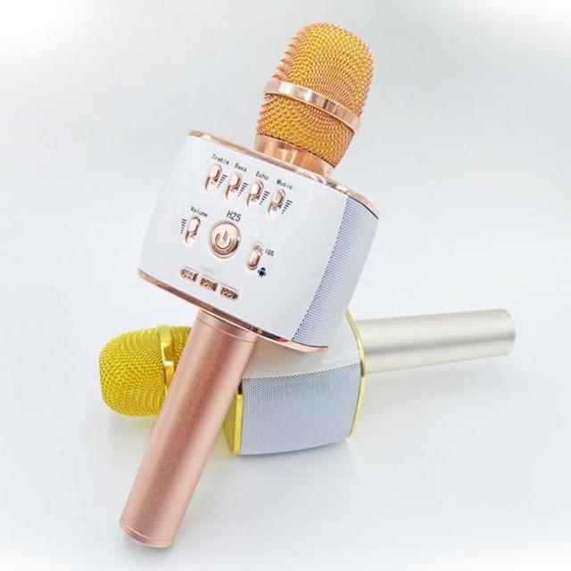 [FreeShip]Micro Karaoke Kiêm Loa Bluetooth iCore IC-M9-Giá siêu sốc