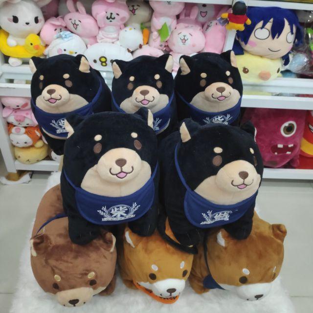 Gấu bông chó shiba