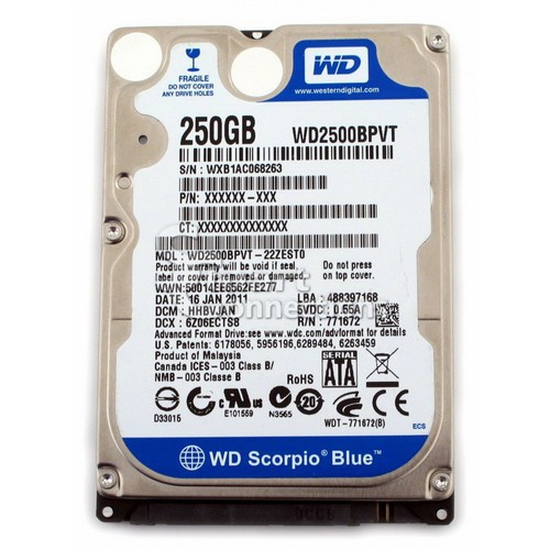 Ổ Cứng Laptop WD Blue 250G Giá chỉ 620.000₫