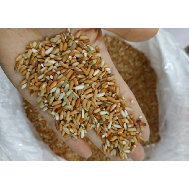 Gạo lứt đỏ dẻo Điện Biên (1kg) ❤️ Hạt ngọc trời