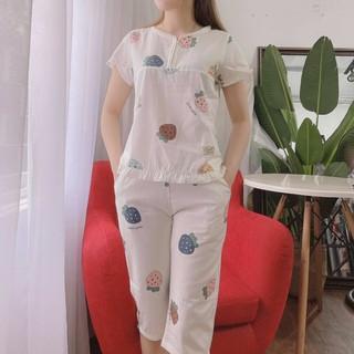 [Mã WAMT2405 giảm 10k đơn 0k] Bộ lửng mặc nhà, bộ đồ nữ chất mềm mát, thấm hút mồ hôi, đủ size thumbnail