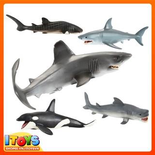 Động vật biển Cá mập, cá heo làm đồ chơi cho trẻ hoặc trưng bày