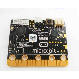 MICRO:BIT board only
