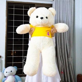 [Hot] Gấu bông 80cm
