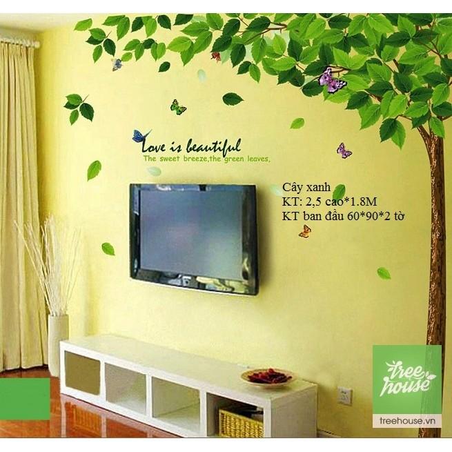 Decal dán tường trang trí phòng cây xanh