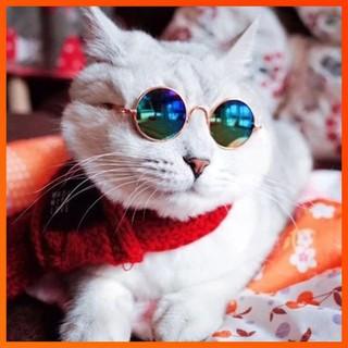 Kính râm kugoda thời trang cho thú cưng