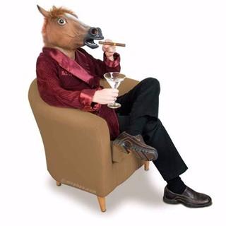 [NHẬP TOYFREESHIP1 GIẢM 15%] Đầu Giả Ngựa Gangnam (Mẫu Ngẫu Nhiên) – Bán buôn siêu rẻ