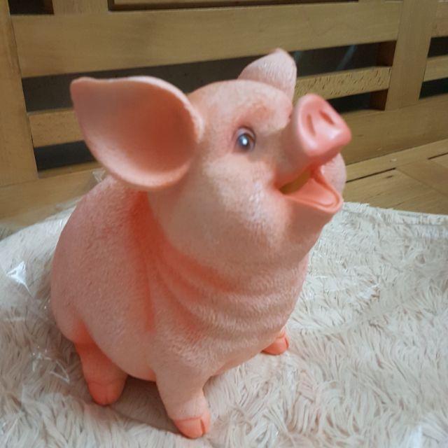 Lợn tiết kiệm 5d siêu hot