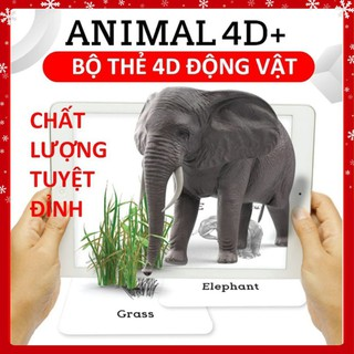 Thẻ học tiếng anh💚FREESHIP💚Bộ thẻ động vật ANIMAL 4D ươm mầm ước mơ trong tương lai