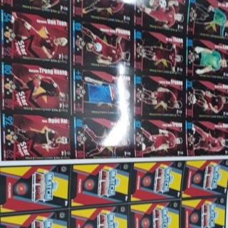 Thẻ Việt Nam (thẻ in) (hình thật) siêu chất