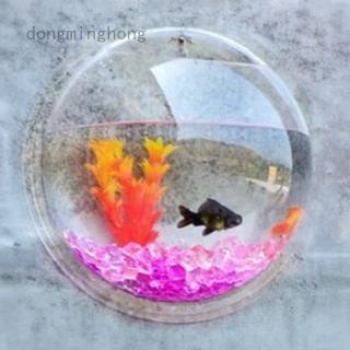 Chậu Hoa Gắn Tường Bằng Acrylic Trong Suốt Hình Cá Nhỏ Dễ Thương Sáng Tạo