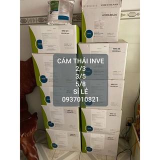 Cám Thái InVe 5-8 thumbnail