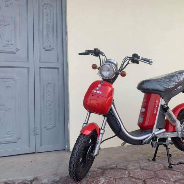 Xe đạp điện ninja giá rẻ