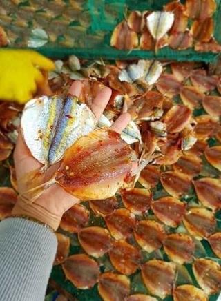 Khô Cá Chỉ Vàng Loại Cực Phẩm Có Ớt Và Không Ớt