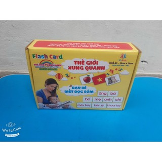 Thẻ flashcard glenn doman
