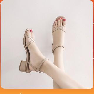 PAMELA - Giày Sandal Nữ 5p Thời Trang Quai Chéo Hot Trend Hè 2021 - S24