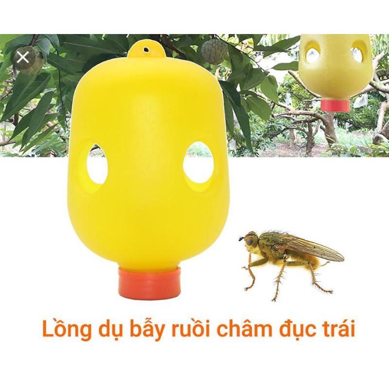 Lồng bẫy ruồi vàng đục trái