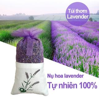 Túi thơm để tủ quần áo -Nụ Hoa Lavender Khô treo để treo phòng ngủ phòng khách xe ô tô Hàng Nhập Khẩu TTL01 thumbnail