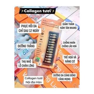 Collagen tươi Ammud – cho làn da căng mịn