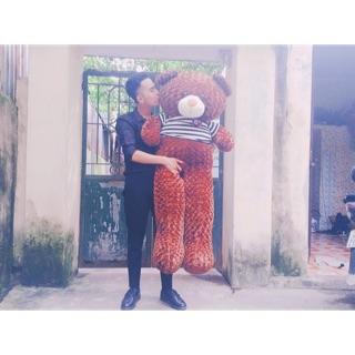[rẻ bất ngờ] Gấu bông tEDdy khổ vải:1m6 cao:1m4