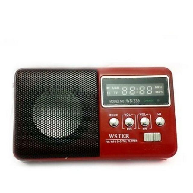 Loa nghe nhạc đa năng kiêm đài FM ws-239