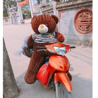 (Ảnh Thật 100%)-Gấu Bông Teddy 1m8 khổ vải, cao 1m6 Rẻ Vô Địch-Freeship
