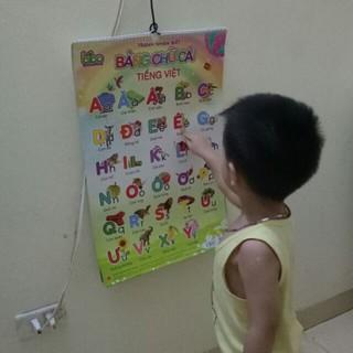 [Hot] Bộ tranh treo tường học tập 12 chủ đề song ngữ cho bé