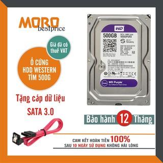 [Mã ELMS05 giảm 5% đơn 300K] Ổ cứng Camera HDD WD Purple 500GB - Bảo hành 12 tháng 1 đổi 1