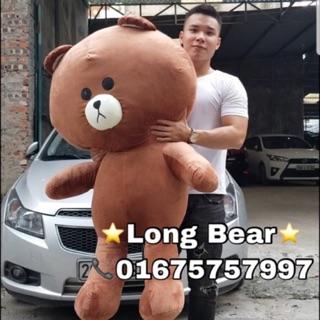 Gấu Bông Brown Đủ size 60cm-1m7 Khổ vải (Hình thật)